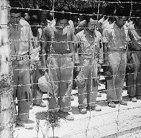 Japanese Prisoners of War at Guam